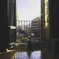 Maraca taking in the view of Madrid in spring 2020