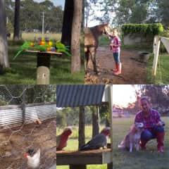 Petsitting in Australia: Review by Mary