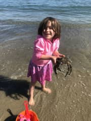 Our daughter loves marine animals! She finds the most unique specimens and isn't afraid to study them. She's in the Monterey Bay here.