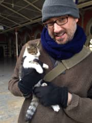 Mike and Istanbul cats