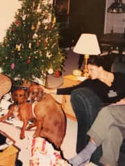 Myself with my pups, Sadie O'Grady and Miles of Smiles Davis. They were with me for a cumulative 15 years.  Both are now chasing deer in Doggie Heaven.