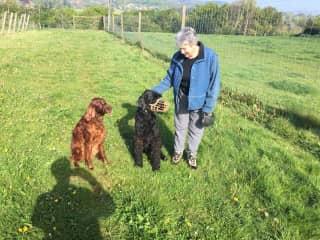 Martha with Poppy and Zeus