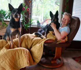 Beautiful blue heelers  — or Australian shepherds, as they're called in the US — Meeka and Kai keep Kirsty warm. Middleville, Michigan, USA. September, 2019.