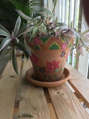 I love gardening and enjoy painting my own planters.