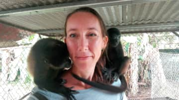 Visiting with some baby Howler monkeys.