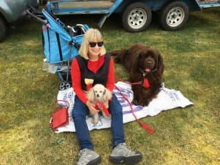 Trish ,Milo & Mo at Robertson ,Southern Highlands.
