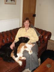 Sally with Breeze (cross-collie) and Jerry (the lap cat)