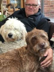 Steve with Rocket & Moose, two great dogs from Housesit #4