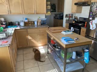 Kitchen -- use and eat whatever you want!