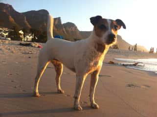 Frieda and me in Camps Bay
