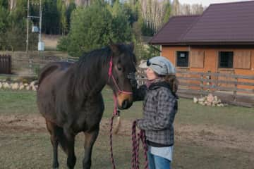 my and my horse
