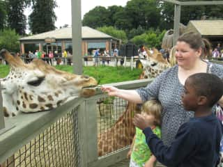 The Longleat and lovely summer memories from England