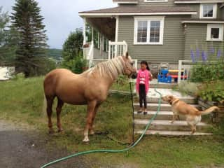 Daughter with my horse and dog