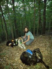 Hiking with our 3 dogs in the Shenandoah mountains