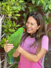 Fun with this Eclectus parrot in Carlsbad, CA for a 2 month housesit.