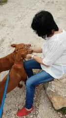 Catherine at a stray dogs care centre