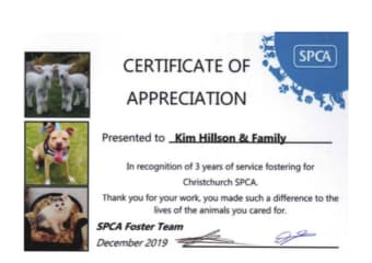 SPCA Canterbury fostering thank you