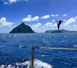 Sailing along the many islands of the Caribbean.