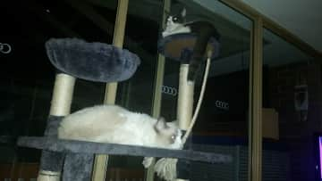 Jasper and Mia