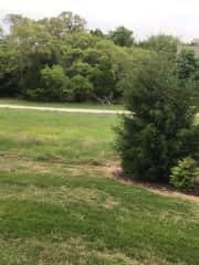 Across yard to walking trails.