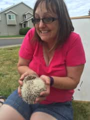Can't remember her name, but she was a sweet hedgehog I had the opportunity to watch once.