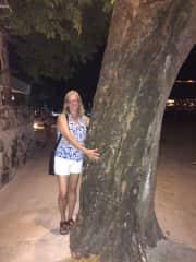 I hug trees.