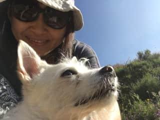 Hiking with my friend's dog Boo