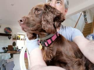 Frankie the dog.