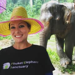 Volunteering at the elephant sanctuary in Thailand for a week.. animals are the love of my life..