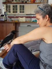 Ifat and Bobby the rescue Crow.