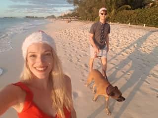 Dog-sitting Rylee over Christmas 2019