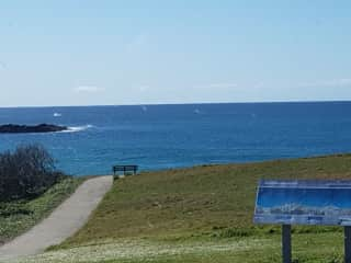 Watching the whales jump at our local beach, Sawtell