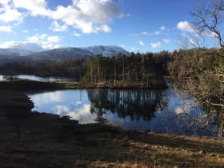 A nearby favourite walk (Tarn Hows)