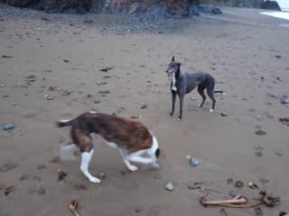 Playing on our other favourite beach.