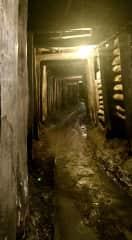 Wonthaggi Coal Mine attraction