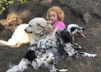 Pet whisperer Aila