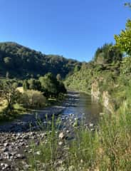 The river near my house, Where we would often swim with the dogs. (NZ)
