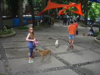 Valeria is going for a walk with our Shih Tzu Carrie. Parque los Caobos, Caracas, Venezuela