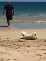 Jim & Max enjoying a run on the beach