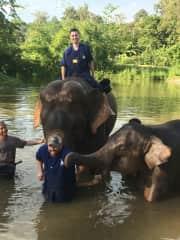Bathing Elephants at an Elephant Sanctuary in Chiang Mai, Thailand