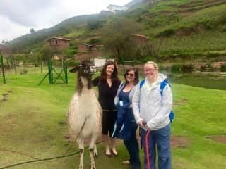 Alyse, Erin and our alpaca friend in Peru