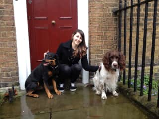 The two pups I spent Christmas with in London.