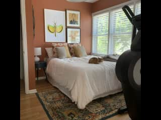 Guest bedroom where you will be staying (with our indoor kitty, Eddie, and an elliptical for your cardio needs)