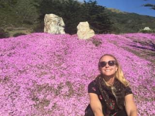 Exploring spring along the California coast