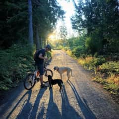 Colin with our dog Cricket, and guest dog, Bili, enjoying an evening bike ride.