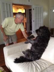 Bert with Birdie, one of our pet-sit buddies!