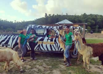 My safari family and some of the animals we worked with everyday