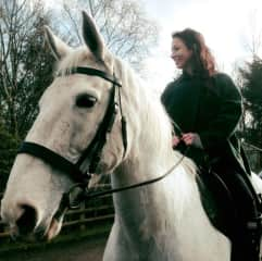 Alina & A beautiful film horse & Irish Draught Cross thoroughbred: Niamh
