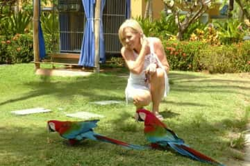 Me and Parrots