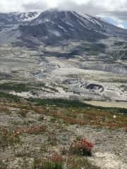 Mount St. Helen's ! I love to go hiking